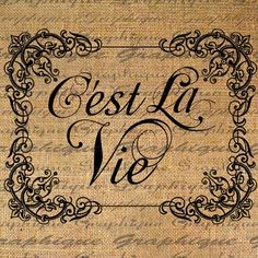 Cest La Vie French  Thats Life Text Typography Word by Graphique,