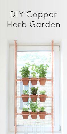 Indoor herb idea