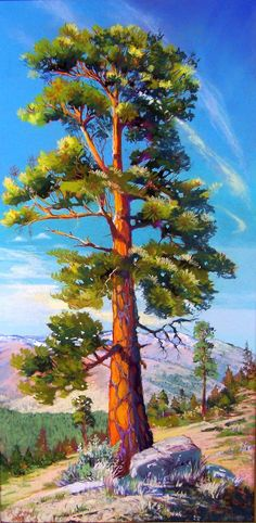 Bonita Paulis Fine Art Lake Tahoe California Pastel Landscapes: Panoramas and Verticals