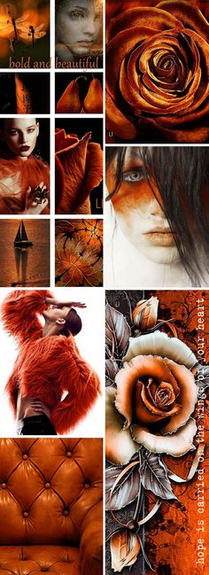 Tuesdays colors: burnt orange and black with some grey if you like. Have fun with these yummy rich tones. Color Trends, Color Combos, Color Collage, Collage Ideas, Paint Color Schemes, Color Balance, Design Graphique, Colour Board, Copper Color