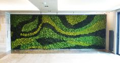 Ideas Wall Green Garden Moss Graffiti For 2019 Moss Wall Art, Moss Art, Moss Graffiti, Diy Wall Painting, Interior Color Schemes, Wall Paper Phone, Video Wall, Mirror Wall Stickers, Modern Landscaping