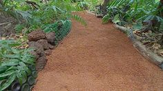 How to make a durable, tropical big-wet-season-resistant garden path that is not awful to walk on in bare feet. A niche market I happen to belong to! Gardening Australia - Fact Sheet: Gravel Paths