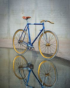 Blue and gold fixed gear bike