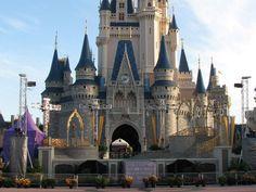 Disney Wolrd