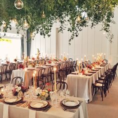 Living Chandeliers! Lighting Design by Got Light - Napa Valley Wedding at Durham Ranch - Photo by Jose Villa - Laurie Arons Special Events, llc, paula leduc fine catering, Honey of a Thousand Flowers by Sarah Winward