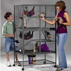 The safety and flexibilty of the MidWest® Ferret Nation Cage means fabulous fun for ferrets! Ferret cage is available in one or two tiers and feature Cage Chinchilla, Wire Rabbit Cages, Ferret Accessories, Ferrets Care, Chinchillas, Baby Ferrets, Ferret Nation Cage, Rat Cage, Small Animal Cage