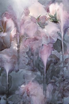 Pink and Grey ~ Nick Knight