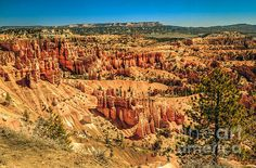 View From Sunset Point :  http://fineartamerica.com/profiles/robert-bales/shop/all/all/all