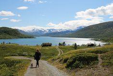 Jeg krysser fingrene for at vi får reist litt i 2021, men uansett er det jo deilig å ha fri! Her ... Aarhus, Oslo, Mountains, Nature, Travel, Viajes, Naturaleza, Destinations, Traveling