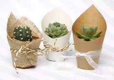 plantas detalle para invitados de boda disponibles en bodas.net  https://www.bodas.net/detalles-de-bodas/grafidimar--e85164