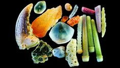 Grains of sand (up close)
