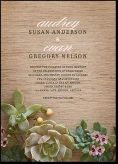 wedding paper divas - succulents