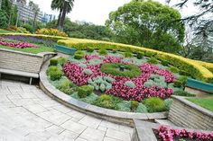 Floral clock in Auckland, New Zealand