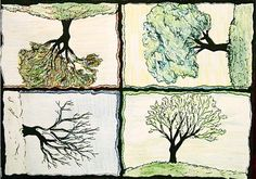 """""""A Tree for all Seasons"""" by Dan Potter"""
