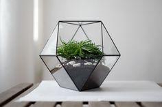 "Geometric glass terrarium ""cuboctahedron"" - handmade glass terrarium - planter…"