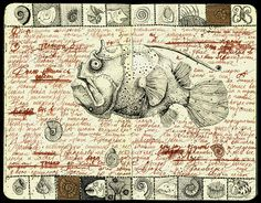 fish by julia_julia.f on Flickr.