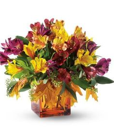 Fall Lilies - alstro with fall leaves in orange cube
