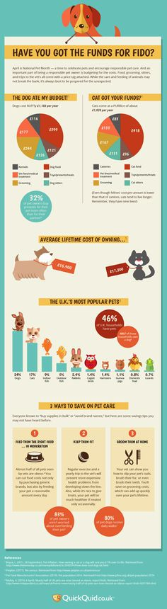 Have You Got the Funds for Fido? - Budgeting for Potential Pet Owners
