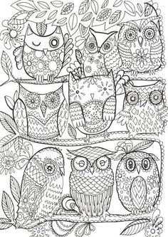 Branches of Owls ... They need a bit of color!