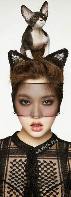 Crazy Cat Lady, Crazy Cats, Face Lace, The Kat, Fabulous Furs, Beautiful Asian Women, Fashion Shoot, Girls Best Friend, Beauty And The Beast