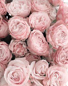 Always fresh flowers for the weekend _______________________________________________________Happy weekend _______________________________________