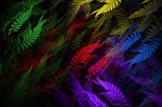 Colors, Nature, Plants, Painting, Art, Painting Art, Colour, Flora, Paintings