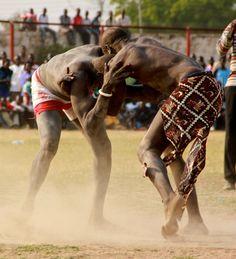 Traditional wrestling in Juba, South Sudan