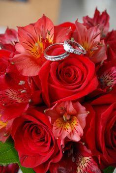 valentine's day las vegas singles
