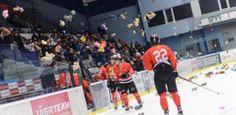 Led zimního stadionu v Plzni zasypou plyšáci. Koná se charitativní zápas pro nemocné děti