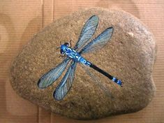 blue dragonfly - I need to learn to paint (well, paint like this). Dragonfly Painting, Blue Dragonfly, Pebble Painting, Pebble Art, Stone Painting, Painted Rock Animals, Hand Painted Rocks, Painted Stones, Stone Crafts