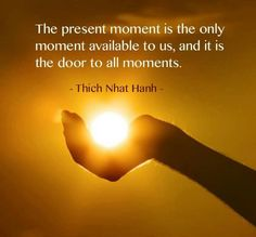 """The present moment is the only moment is available to us, and it is the door to all other moments."" - Trich Nhat Hanh."