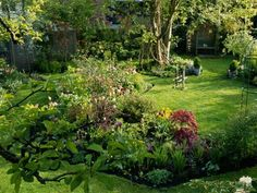 natural garden design with lawn and trees