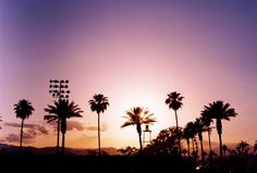 Kinga Burza's Coachella photo diary 2013