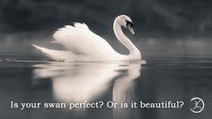 Namaste Yoga | Strength is Beauty as Beauty is Strength #Namaste #Yoga