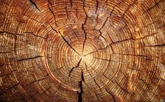 Wood HD Wallpaper 12 Download  Wallpicshd