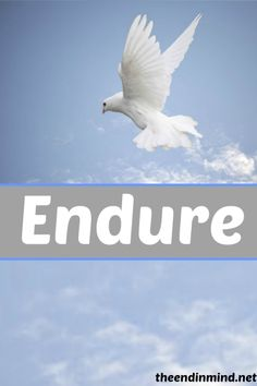 Endure - By Lisa Nehring