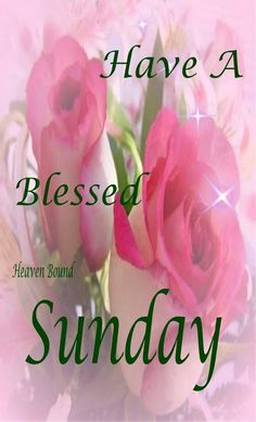 Good morning have a fabulous day happy sunday pictures photos and have a blessed sunday m4hsunfo
