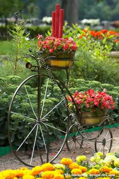 Gardening serves different purposes for many people. For some, gardening is a means of relaxation, as they find it therapeutic to create beautiful floral arrangements and give new life to flowers. Others use gardening . Beautiful Gardens, Beautiful Flowers, Antique Bicycles, Pot Plante, Deco Boheme, Bicycle Art, Garden Planters, Dream Garden, Yard Art
