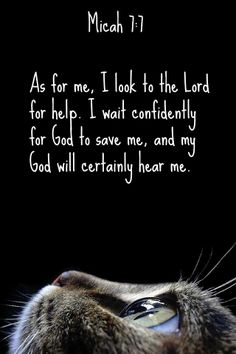 Micah 7:7 As for me, I look to the Lord for help.     I wait confidently for God to save me,     and my God will certainly hear me.