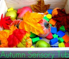 Try making an Autumn sensory tub so your can play, feel and talk about the Autumn objects with your wee one. Toddler Sensory Bins, Baby Sensory, Sensory Activities, Infant Activities, Sensory Play, Sensory Boxes, Sensory Table, Disney With A Toddler, Toddler Fun