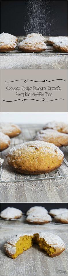 Copycat Recipe: Panera Bread's Pumpkin Muffin Tops – Blooming Bites Photography