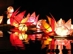 diyas (clay lamps) lit inside colourful flowers for divali