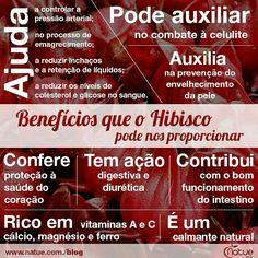 Benefícios do hibisco