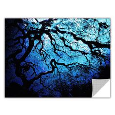 ArtApeelz 'Japanese Ice Tree' by John Black Photographic Print Removable Wall Decal