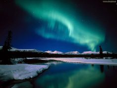 Aurora Borealis in Alaska- a must see before I die! (The aurora is unpredictable, so I'll have to just get lucky I guess! Alaska Northern Lights, See The Northern Lights, Northern Canada, Oh The Places You'll Go, Places To Travel, Places To Visit, Travel Destinations, Aurora Borealis, Dream Vacations