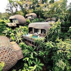 Keemala Luxury Treetop Villa Resort in Phuket, Thailand. The entire resort was designed to look like straw mushrooms growing in the rainforest. Beautiful Hotels, Beautiful Places, Amazing Hotels, Beautiful Pictures, Vacation Places, Dream Vacations, Hotels And Resorts, Best Hotels, Lux Hotels