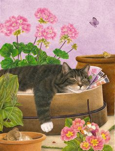 Cat Art by Artist Anne Mortimer I Love Cats, Crazy Cats, Cool Cats, Image Chat, Gatos Cats, Photo Chat, Flag Decor, Here Kitty Kitty, Sleepy Kitty