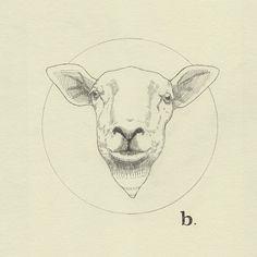 b. sheep by Peter Carrington, via Flickr