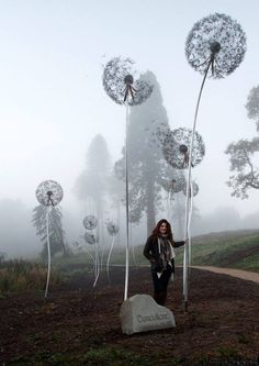 Giant Dandelion Sculpture Installation at Trentham Estate by Amy Wight