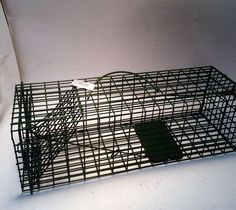 "Duke Cage Live Trap 16""x5""x5"" #1100 Trapping rabbit Squirrel Chipmunk Rat garden #Duke"